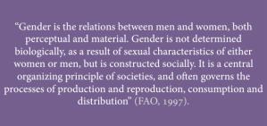 gender-definition